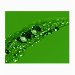 Green Drops Glasses Cloth (small, Two Sided)