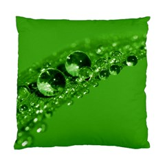Green Drops Cushion Case (single Sided)