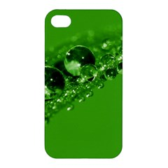 Green Drops Apple Iphone 4/4s Premium Hardshell Case by Siebenhuehner