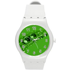 Green Drops Plastic Sport Watch (medium) by Siebenhuehner