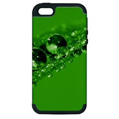 Green Drops Apple Iphone 5 Hardshell Case (pc+silicone) by Siebenhuehner