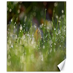 Drops Canvas 8  X 10  (unframed)