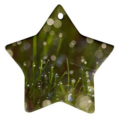 Waterdrops Star Ornament (two Sides) by Siebenhuehner