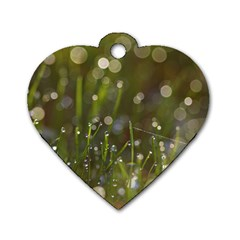 Waterdrops Dog Tag Heart (two Sided)