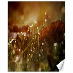 Waterdrops Canvas 11  X 14  (unframed) by Siebenhuehner