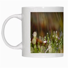 Sundrops White Coffee Mug