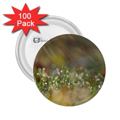 Sundrops 2 25  Button (100 Pack)