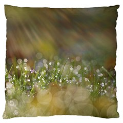 Sundrops Large Cushion Case (two Sided)  by Siebenhuehner