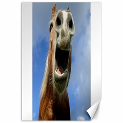 Haflinger  Canvas 24  X 36  (unframed) by Siebenhuehner