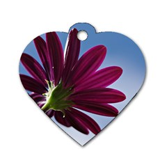Daisy Dog Tag Heart (two Sided) by Siebenhuehner