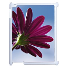 Daisy Apple Ipad 2 Case (white) by Siebenhuehner
