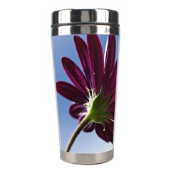 Daisy Stainless Steel Travel Tumbler by Siebenhuehner