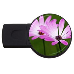 Osterspermum 2gb Usb Flash Drive (round) by Siebenhuehner