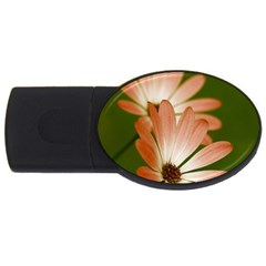 Osterspermum 4gb Usb Flash Drive (oval) by Siebenhuehner