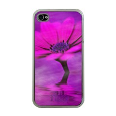 Osterspermum Apple Iphone 4 Case (clear) by Siebenhuehner