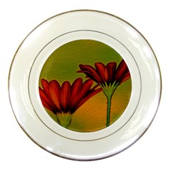 Osterspermum Porcelain Display Plate by Siebenhuehner