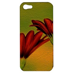 Osterspermum Apple Iphone 5 Hardshell Case by Siebenhuehner