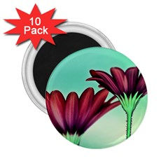 Osterspermum 2 25  Button Magnet (10 Pack) by Siebenhuehner