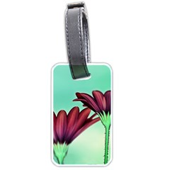 Osterspermum Luggage Tag (one Side) by Siebenhuehner