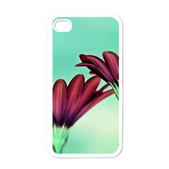 Osterspermum Apple Iphone 4 Case (white) by Siebenhuehner