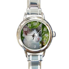 Young Cat Round Italian Charm Watch