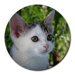 Young Cat 8  Mouse Pad (round) by Siebenhuehner