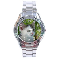 Young Cat Stainless Steel Watch (men s) by Siebenhuehner