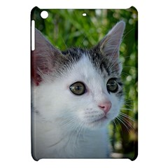 Young Cat Apple Ipad Mini Hardshell Case by Siebenhuehner