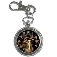 Chain Key Chain & Watch by Siebenhuehner