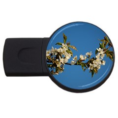 Cherry Blossom 2gb Usb Flash Drive (round) by Siebenhuehner