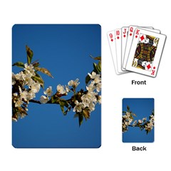 Cherry Blossom Playing Cards Single Design by Siebenhuehner