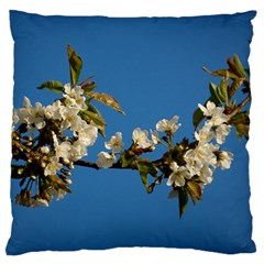 Cherry Blossom Large Cushion Case (single Sided)  by Siebenhuehner