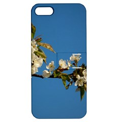 Cherry Blossom Apple Iphone 5 Hardshell Case With Stand