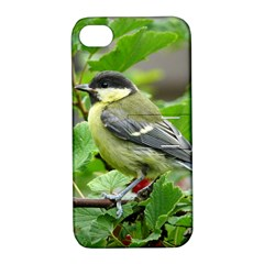 Songbird Apple Iphone 4/4s Hardshell Case With Stand by Siebenhuehner