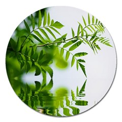 Leafs With Waterreflection Magnet 5  (round) by Siebenhuehner