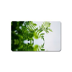 Leafs With Waterreflection Magnet (name Card) by Siebenhuehner