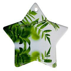 Leafs With Waterreflection Star Ornament (two Sides) by Siebenhuehner