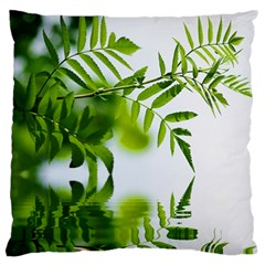 Leafs With Waterreflection Large Cushion Case (single Sided)  by Siebenhuehner