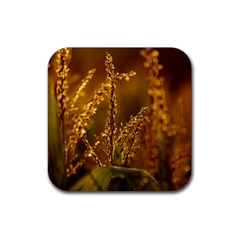 Field Drink Coaster (square) by Siebenhuehner