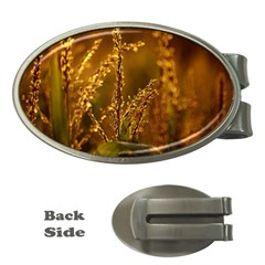 Field Money Clip (oval) by Siebenhuehner