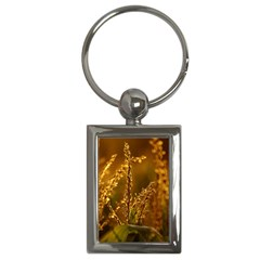 Field Key Chain (rectangle) by Siebenhuehner