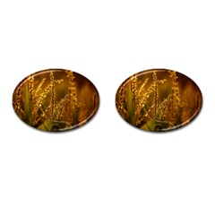 Field Cufflinks (oval) by Siebenhuehner