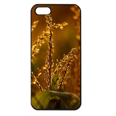 Field Apple Iphone 5 Seamless Case (black) by Siebenhuehner