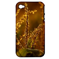 Field Apple Iphone 4/4s Hardshell Case (pc+silicone) by Siebenhuehner