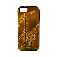 Field Apple Iphone 5 Classic Hardshell Case (pc+silicone) by Siebenhuehner