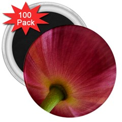 Poppy 3  Button Magnet (100 Pack) by Siebenhuehner