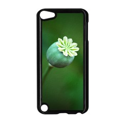 Poppy Capsules Apple Ipod Touch 5 Case (black) by Siebenhuehner