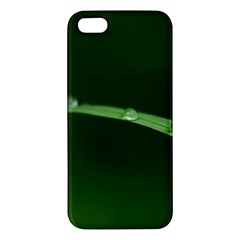 Pearls   Iphone 5s Premium Hardshell Case