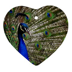 Peacock Heart Ornament by Siebenhuehner
