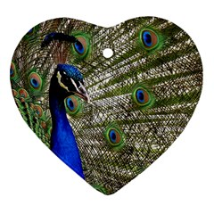 Peacock Heart Ornament (two Sides) by Siebenhuehner